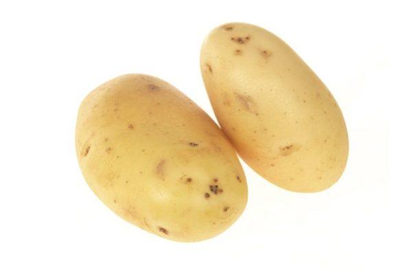 Maris Piper Potato